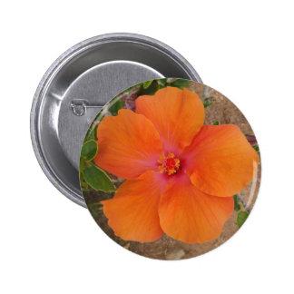 Orange Hibiscus button