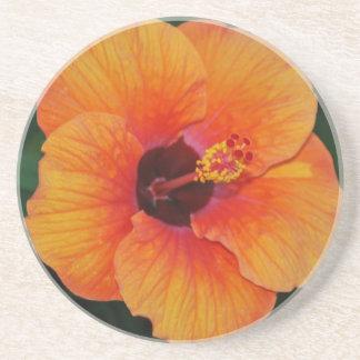 Orange Hibiscus Coaster