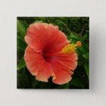 Orange Hibiscus Flower Button