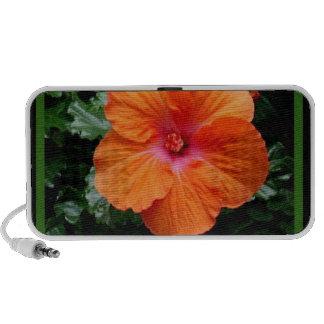 Orange Hibiscus Flower by Sharles iPod Speakers