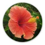 Orange Hibiscus Flower Ceramic Knob