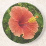 Orange Hibiscus Flower Coaster