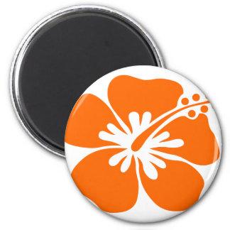 Orange hibiscus flower magnet
