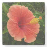 Orange Hibiscus Flower Stone Coaster