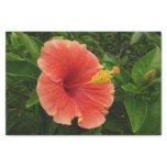Orange Hibiscus Flower Tissue Paper