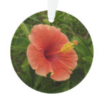 Orange Hibiscus Flower Tropical Floral Ornament