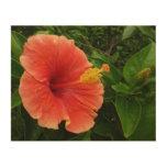 Orange Hibiscus Flower Wood Wall Decor