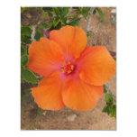 Orange Hibiscus invitation / card, customize