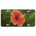 Orange Hibiscus License Plate