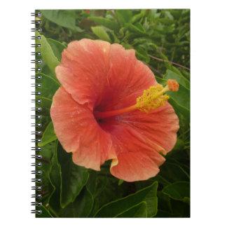 Orange Hibiscus Notebook