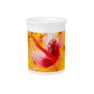 Orange Hibiscus Pitcher