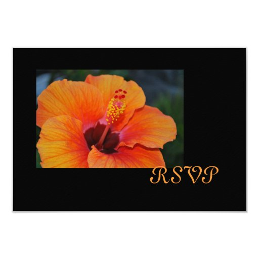 Orange Hibiscus RSVP Card Custom Announcements