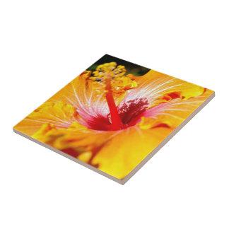 Orange Hibiscus Side View Tile