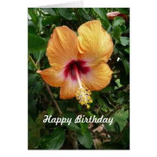 Orange Hibiscus Tropical Flower Birthday Template Greeting Cards