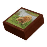Orange Highland Cow in Scotland Trinket Box