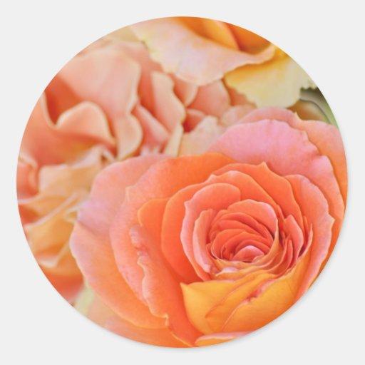 Orange hybrid tea rose round sticker