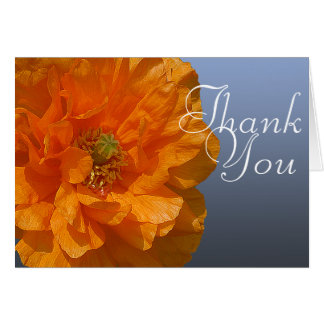 Orange Iceland Poppy Flower Photo Floral Thank You Card
