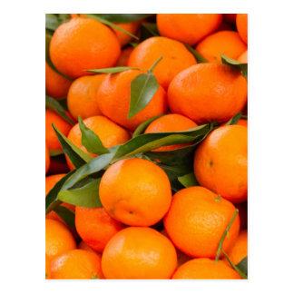 orange in winter postcard