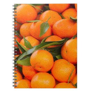 orange in winter spiral notebook
