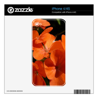 Orange iPhone 4 Skin