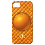 Orange iPhone 5 Case