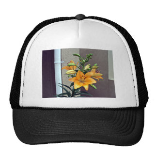 Orange Iris Flower Mesh Hat
