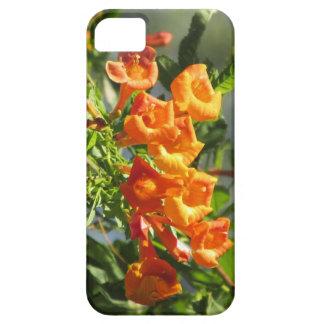 Orange Jubilee iPhone 5 Case