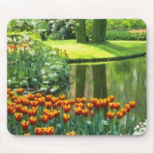 Orange Keukenhof Gardens, Holland flowers Mousepad