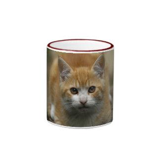 Orange Kitten Mug