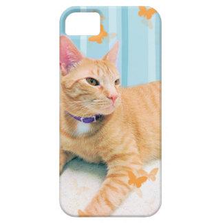 Orange Kitty Cat iPhone 5 Covers