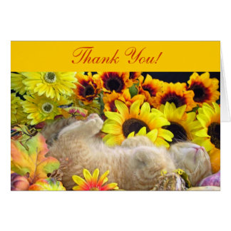 Orange Kitty Cat Kitten Sleeping, Thank You Note Card