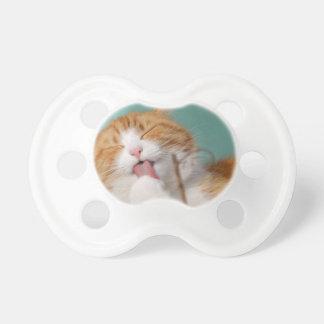 Orange Kitty Licks Pacifier