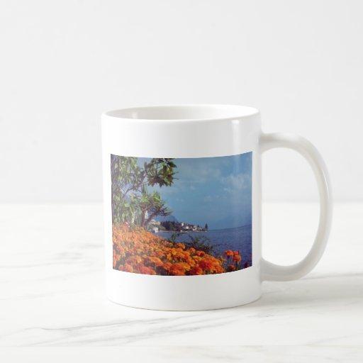 Orange Lake Geneva, Montreux, Switzerland flowers Classic White Coffee Mug