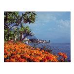 Orange Lake Geneva, Montreux, Switzerland flowers Postcard