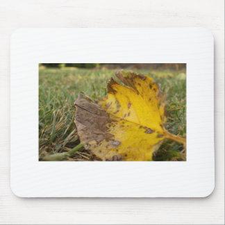 Orange Leaf Mouse Pad