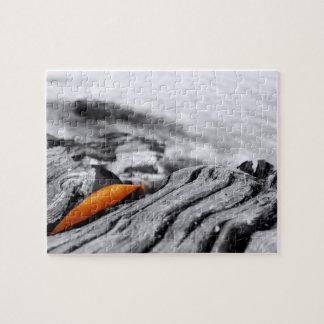 Orange Leaf Photography Puzzle