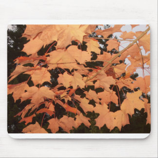 ORANGE LEAVES by SHARON SHARPE Mouse Pad