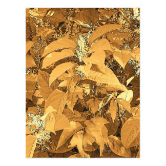 orange leaves postcard