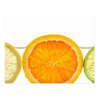Orange lemon and lime slices in water postcards