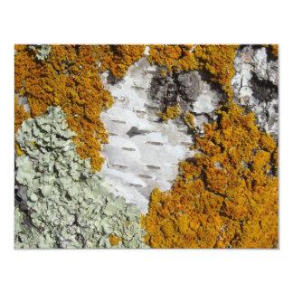 Orange lichen on a tree trunk invitation