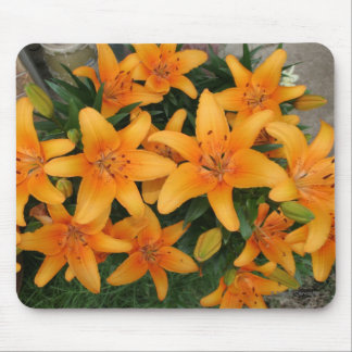 Orange Lilly's Mouse Pad