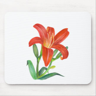 Orange Lily Botanical Illustration Mouse Pad