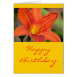 Orange Lily Cards