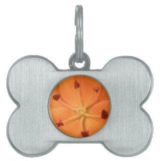 Orange Lily Floral Pet Tag