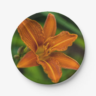 Orange lily flower 7 inch paper plate