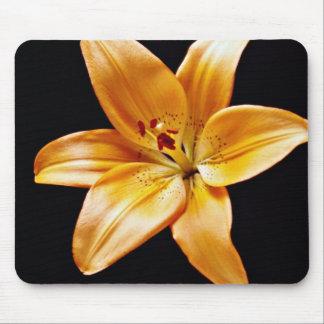 Orange lily  flowers mousepad