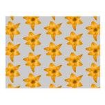 Orange Lily Flowers on Light Gray. Post Card