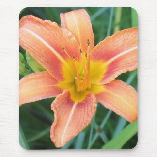 Orange Lily Mouse Pad