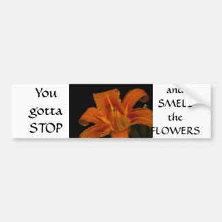 Orange Lily on Black Bumper Sticker