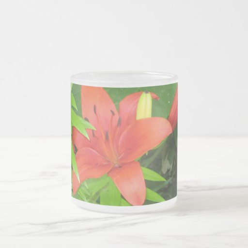 Orange Lily On Green Leaves Frosted Mug